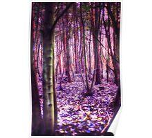 Enchanted Wood Poster