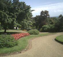Pathway through Candie Gardens by jrbyford