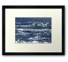 On Thin Ice Framed Print