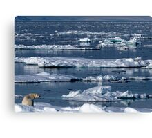 On Thin Ice Canvas Print