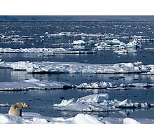 On Thin Ice Photographic Print