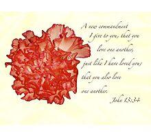 John 13:34 Photographic Print