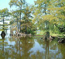 Louisiana bayou by Airbrushr  Rick Shores