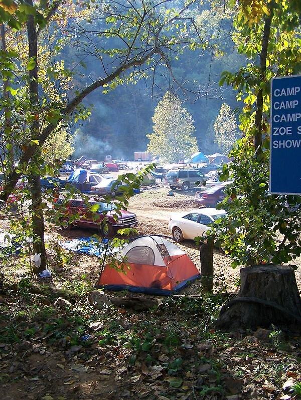 Camp Zoe by Amy Corkin