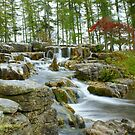 Japanese Garden Waterfall by DES PALMER
