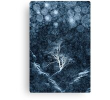 Midnight Ice Storm Canvas Print