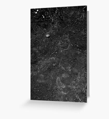 Soil Greeting Card