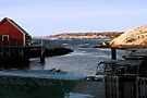 Peggy's Cove, NS (2) by Darlene Ruhs