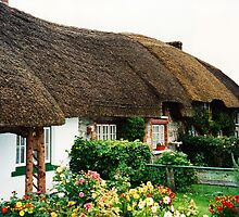 Irish Thatched Roof Cottage by Marylamb
