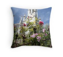 Ruin and Beauty Throw Pillow