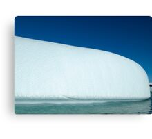 Moby Ice Dick Canvas Print