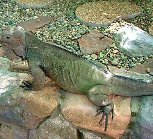 "THINK LIZARDS: ""Camouflaged"" by Patricia Anne McCarty-Tamayo"