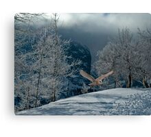 Barn Owl Winter Snow Flight Canvas Print