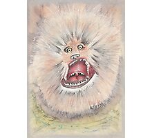 Fizzgig - The Dark Crystal Photographic Print