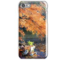 Bald Cypress iPhone Case/Skin