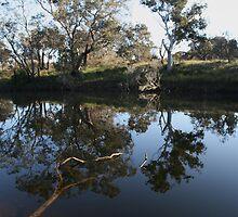 Upper Kalgan River by max cooper