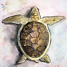 Sea Turtle Painting by derekmccrea