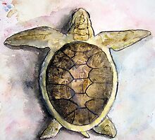 Sea Turtle Painting by derekmccrea