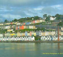 Cork Harbour by DES PALMER
