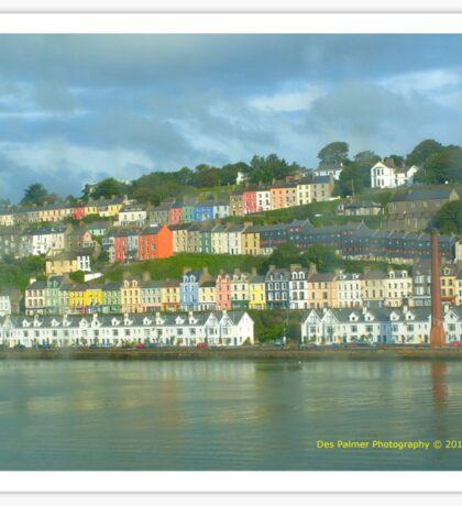 Cork Harbour Sticker
