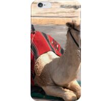 Israel, Dead Sea Camel ride for tourists  iPhone Case/Skin