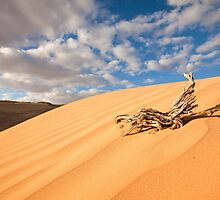 Desert sand dune with blue sky by PhotoStock-Isra