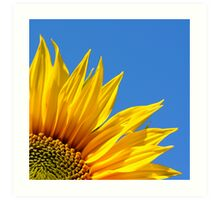 Always look on the bright side of life! Art Print