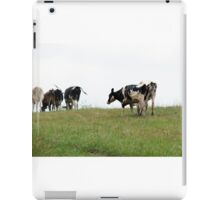 Cows in Pasture iPad Case/Skin