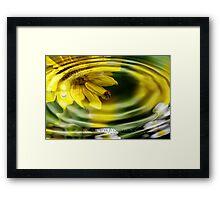 water flora Framed Print