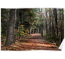 October Hike Poster