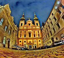 night in Vienna   by Dan Shalloe