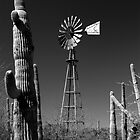 Windmill and Saguaro by Brad Sauter