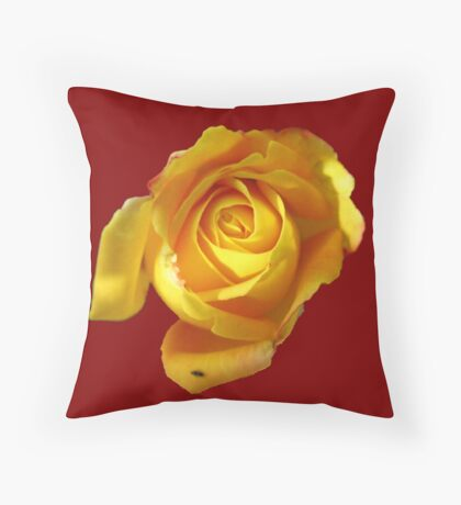 Did I ever tell you... Throw Pillow