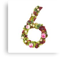 The number six Part of a set of letters, Numbers and symbols of the Alphabet made with flowers Canvas Print