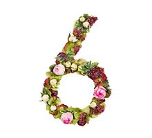 The number six Part of a set of letters, Numbers and symbols of the Alphabet made with flowers Photographic Print