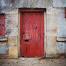 Fort Door by Tony Lomas