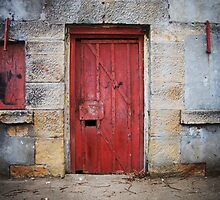 Fort Door by Tony Lomas