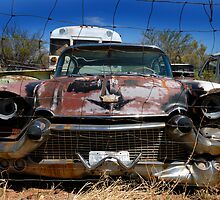 Caged Cadillac by Brad Sauter