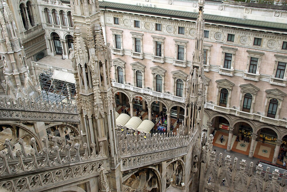 Milan cathedral  by fuxart