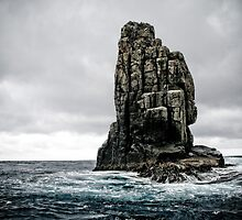 Rock Formation - Tasman Sea by Kelly McGill