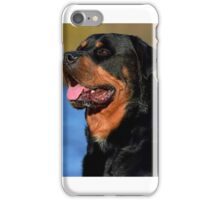 Milo by the lake iPhone Case/Skin