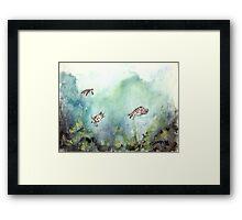 3 sea turtles Framed Print