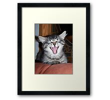 belly laugh Framed Print