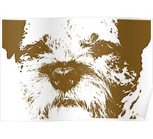 Border terrier - brown Poster