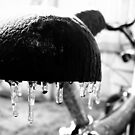 Frost Bike by Chris Richards