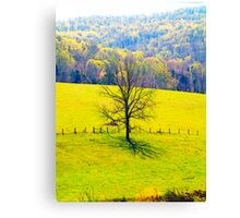 Rodgers Hollow Canvas Print