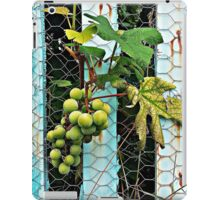Backyard Vineyard © iPad Case/Skin