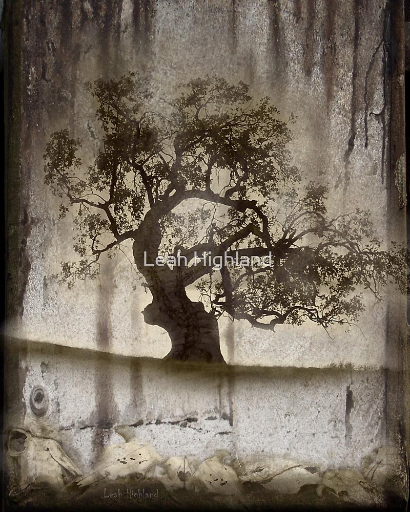 The Yard by Leah Highland