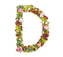 Capital Letter D Part of a set of letters, Numbers and symbols by PhotoStock-Isra