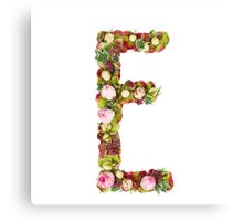 Capital Letter E Part of a set of letters, Numbers and symbols  Canvas Print
